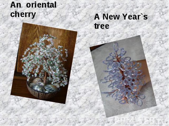 An oriental cherryA New Year`s tree