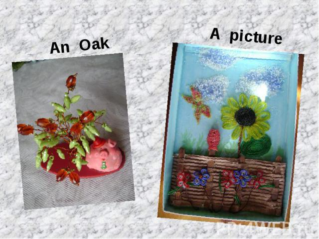 An OakA picture