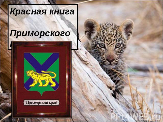 Красная книга Приморского края.