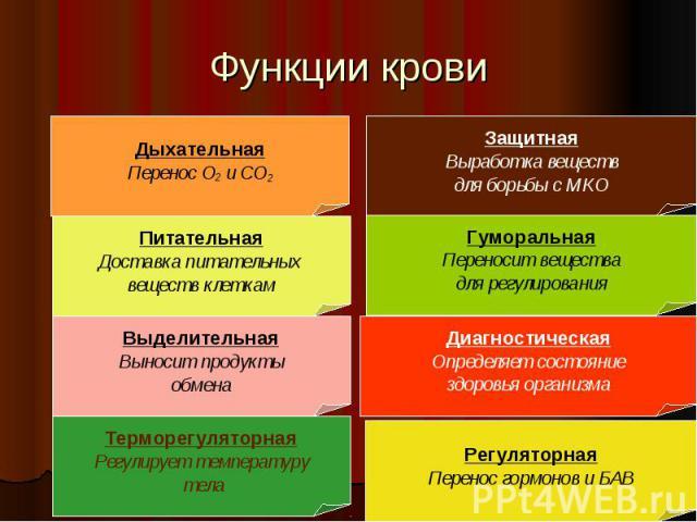 Функции крови
