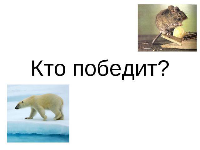 Кто победит?