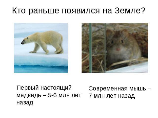 Кто раньше появился на Земле?Первый настоящий медведь – 5-6 млн лет назад Современная мышь – 7 млн лет назад