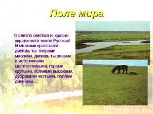 Поле мира О светло светлая и, красно украшенная земля Русская! И многими красота