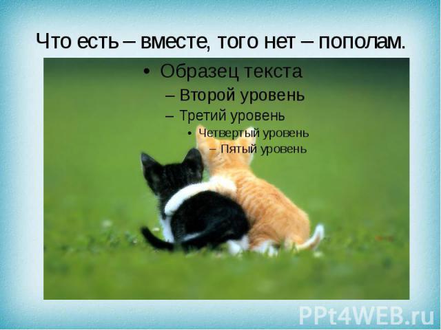 Что есть – вместе, того нет – пополам.