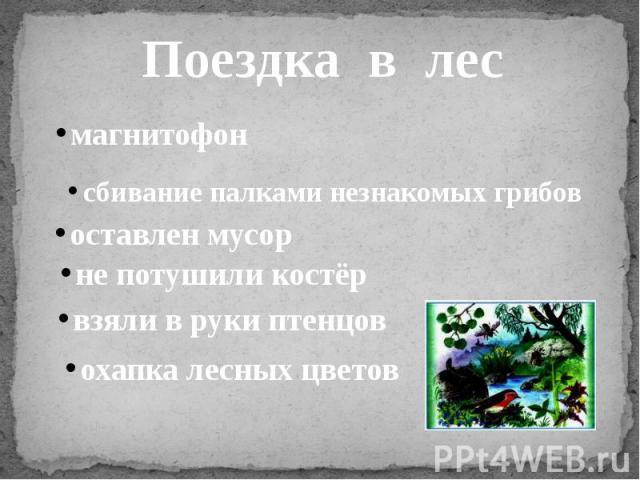 Поездка в лесмагнитофонсбивание палками незнакомых грибовоставлен мусорне потушили костёрвзяли в руки птенцовохапка лесных цветов