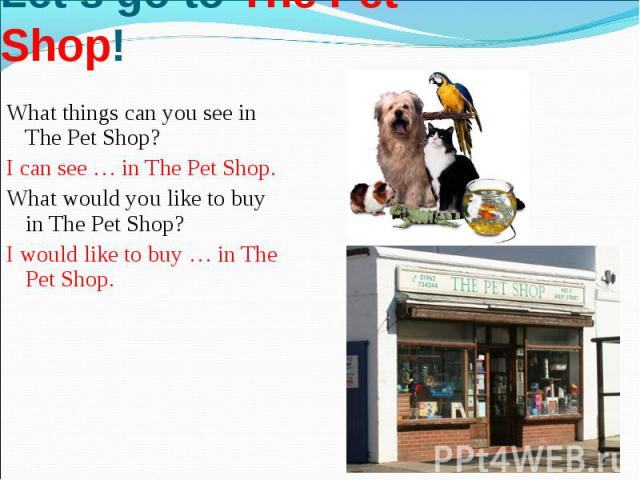 Let's go to The Pet Shop!What things can you see in The Pet Shop?I can see … in The Pet Shop. What would you like to buy in The Pet Shop?I would like to buy … in The Pet Shop.