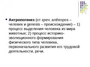 Антропогенез (от греч. anthropos – человек и genesis – происхождение) – 1) проце