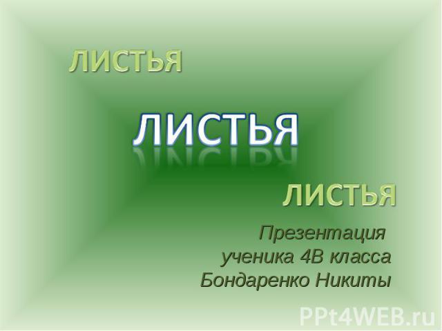 Листья Презентация ученика 4В класса Бондаренко Никиты