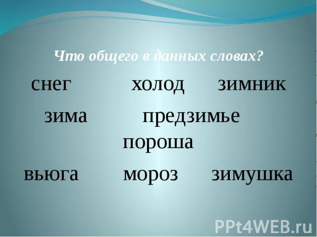Что общего в данных словах?снег холод зимникзима предзимье порошавьюга мороз зимушка
