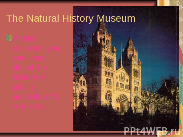 The Natural History MuseumAt this museum you can learn about the history of plants, animals and minerals.