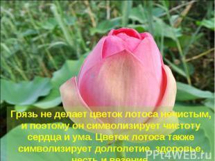 Грязь не делает цветок лотоса нечистым, и поэтому он символизирует чистоту сердц