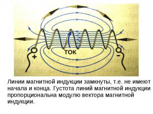 Линии магнитной индукции замкнуты, т.е. не имеют начала и конца. Густота линий м