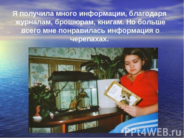 Я получила много информации, благодаря журналам, брошюрам, книгам. Но больше всего мне понравилась информация о черепахах.