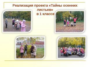 Реализация проекта «Тайны осенних листьев» в 1 классе