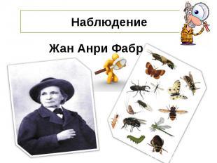 НаблюдениеЖан Анри Фабр