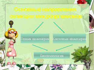Основные направления селекции микроорганизмов