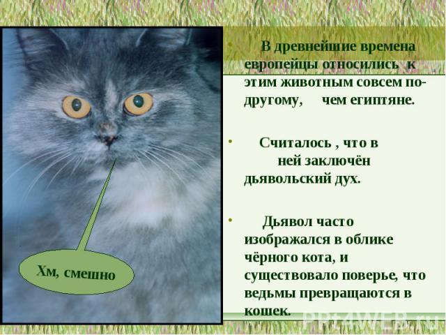 В древнейшие времена европейцы относились к этим животным совсем по-другому, чем египтяне. Считалось , что в ней заключён дьявольский дух. Дьявол часто изображался в облике чёрного кота, и существовало поверье, что ведьмы превращаются в кошек.