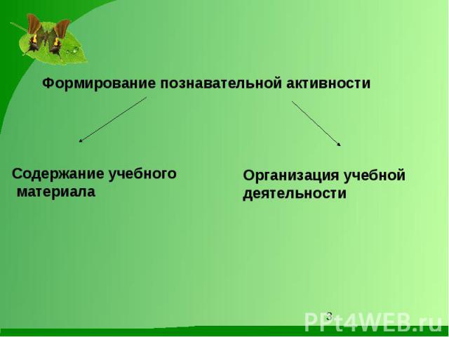 Формирование познавательной активностиСодержание учебного материалаОрганизация учебной деятельности