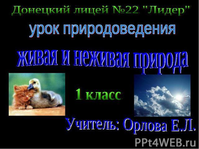Донецкий лицей №22