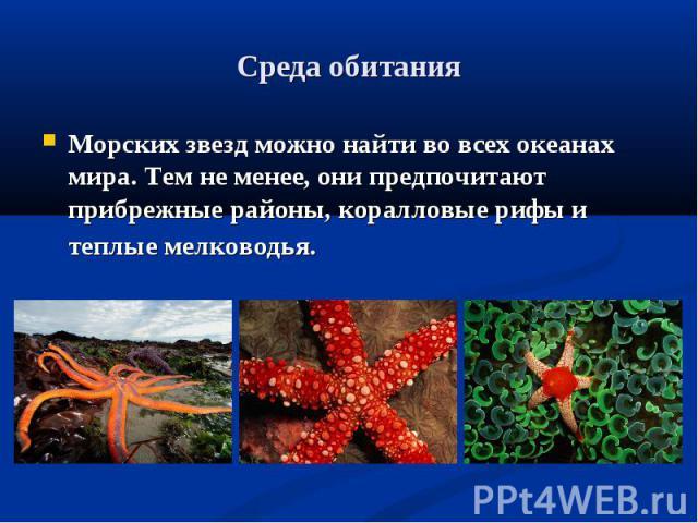 Среда обитания Морских звезд можно найти во всех океанах мира. Тем не менее, они предпочитают прибрежные районы, коралловые рифы и теплые мелководья.