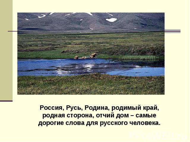 Россия, Русь, Родина, родимый край, родная сторона, отчий дом – самые дорогие слова для русского человека.