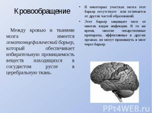 Кровообращение Между кровью и тканями мозга имеется гематоэнцефалический барьер,