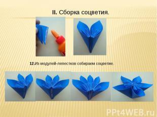 II. Сборка соцветия. 12.Из модулей-лепестков собираем соцветие.
