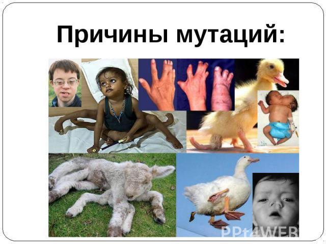 Причины мутаций: