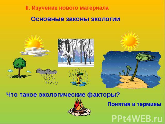 II. Изучение нового материалаОсновные законы экологииЧто такое экологические факторы?Понятия и термины