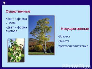 СущественныеЦвет и форма ствола,Цвет и форма листьевНесущественныеВозрастВысотаМ