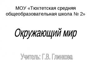 МОУ «Тюхтетская средняя общеобразовательная школа № 2» Окружающий мир Учитель: Г