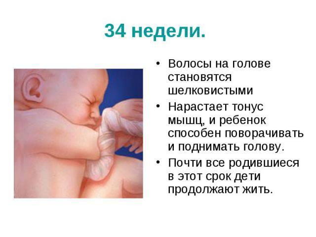 34 недели. Волосы на голове становятся шелковистыми Нарастает тонус мышц, и ребенок способен поворачивать и поднимать голову. Почти все родившиеся в этот срок дети продолжают жить.