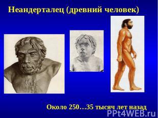 Неандерталец (древний человек)Около 250…35 тысяч лет назад