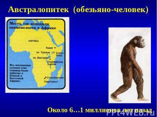 Австралопитек (обезьяно-человек)Около 6…1 миллионов лет назад
