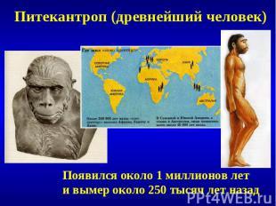 Питекантроп (древнейший человек)Появился около 1 миллионов лети вымер около 250