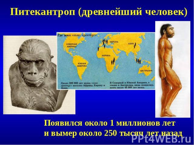 Питекантроп (древнейший человек)Появился около 1 миллионов лети вымер около 250 тысяч лет назад