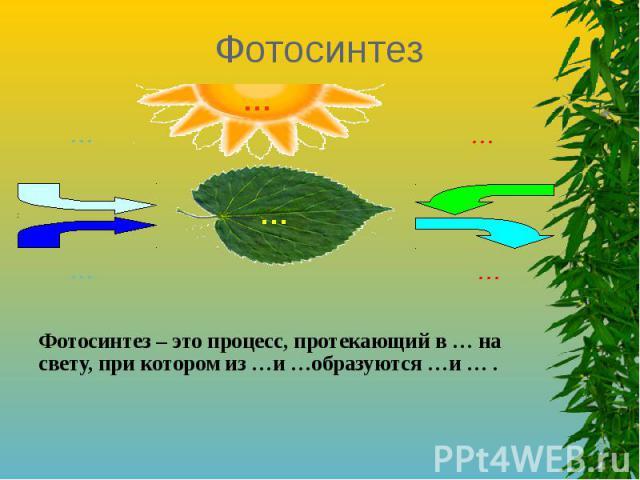 ФотосинтезФотосинтез – это процесс, протекающий в … на свету, при котором из …и …образуются …и … .
