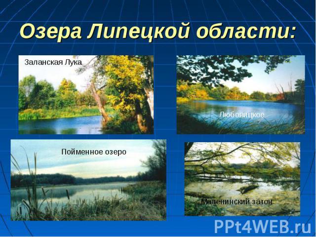 Доклад озера липецкой области 7301