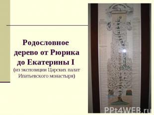 Родословное дерево от Рюрика до Екатерины I (из экспозиции Царских палат Ипатьев