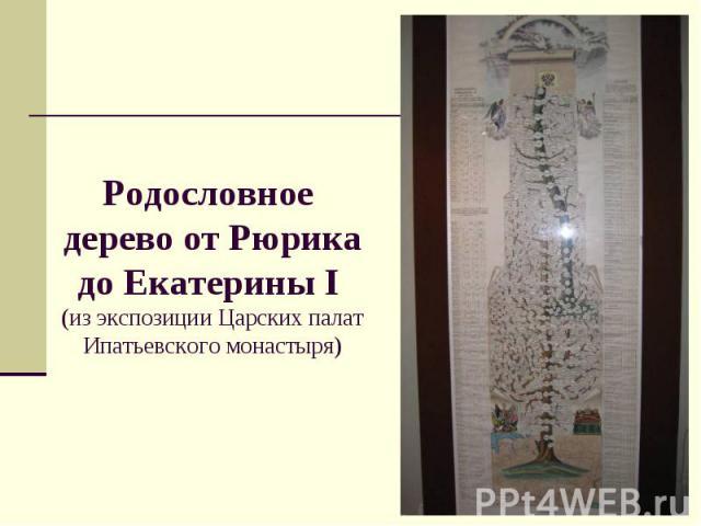 Родословное дерево от Рюрика до Екатерины I (из экспозиции Царских палат Ипатьевского монастыря)