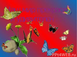 Наш мир прекрасен и удивителен . . .