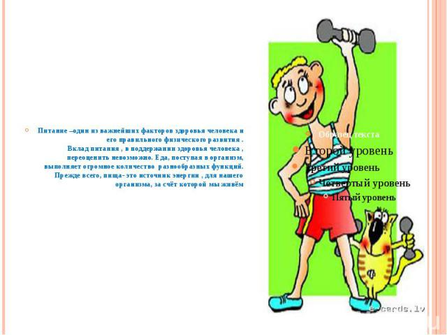Питание –один из важнейших факторов здоровья человека и его правильного физического развития .Вклад питания , в поддержании здоровья человека , переоценить невозможно. Еда, поступая в организм, выполняет огромное количество разнообразных функций.Пре…