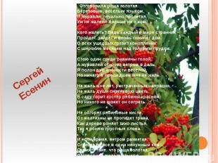 Сергей Есенин Отговорила роща золотаяБерезовым, веселым языком,И журавли, печаль