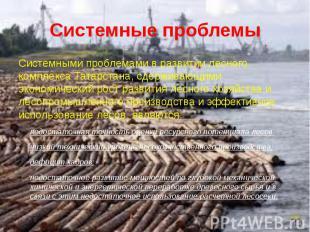 Системные проблемы Системными проблемами в развитии лесного комплекса Татарстана