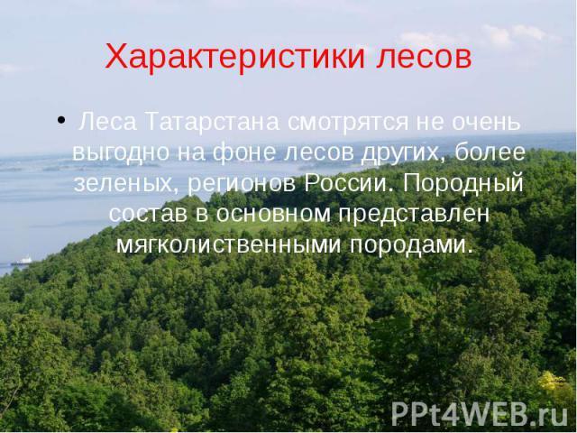 Характеристики лесовЛеса Татарстана смотрятся не очень выгодно на фоне лесов других, более зеленых, регионов России. Породный состав в основном представлен мягколиственными породами.