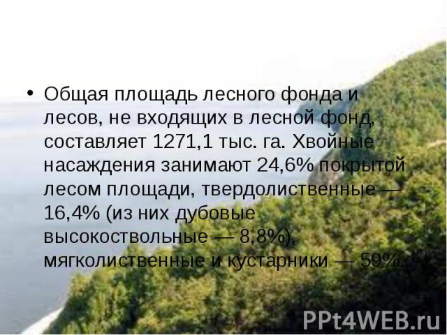 Общая площадь лесного фонда и лесов, не входящих в лесной фонд, составляет 1271,1 тыс. га. Хвойные насаждения занимают 24,6% покрытой лесом площади, твердолиственные — 16,4% (из них дубовые высокоствольные — 8,8%), мягколиственные и кустарники— 59%.