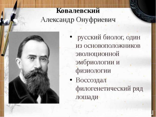 КовалевскийАлександр Онуфриевич русский биолог, один из основоположников эволюционной эмбриологии и физиологииВоссоздал филогенетический ряд лошади