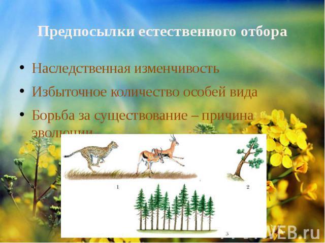 Предпосылки естественного отбора Наследственная изменчивостьИзбыточное количество особей видаБорьба за существование – причина эволюции