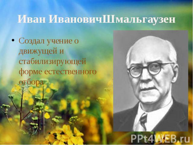 ИванИвановичШмальгаузенСоздал учение о движущей и стабилизирующей форме естественного отбора