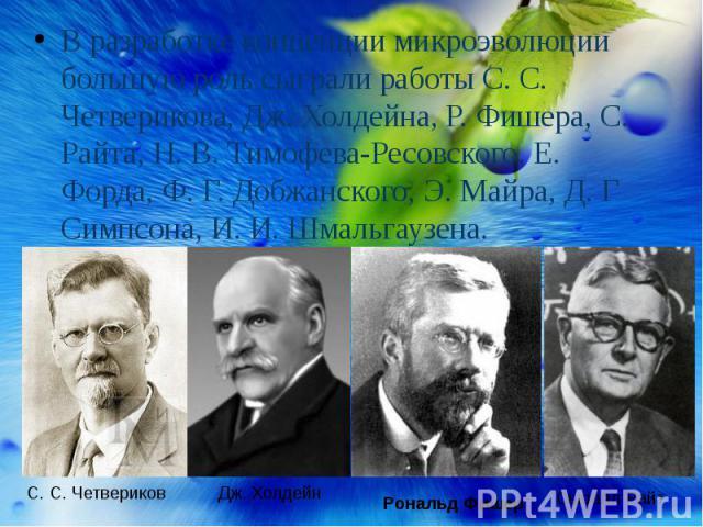 В разработке концепции микроэволюции большую роль сыграли работы С. С. Четверикова, Дж. Холдейна, Р. Фишера, С. Райта, Н. В. Тимофева-Ресовского, Е. Форда, Ф. Г. Добжанского, Э. Майра, Д. Г Симпсона, И. И. Шмальгаузена.
